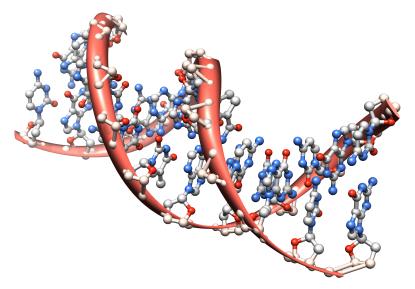 Broad Institute/MIT/Harvard CRISPR Patents Survive PTO Interference