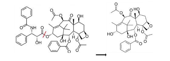 Diagram of Molecules